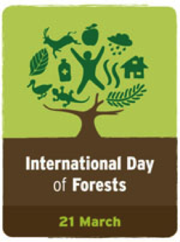 International day of Forest 21 March2014