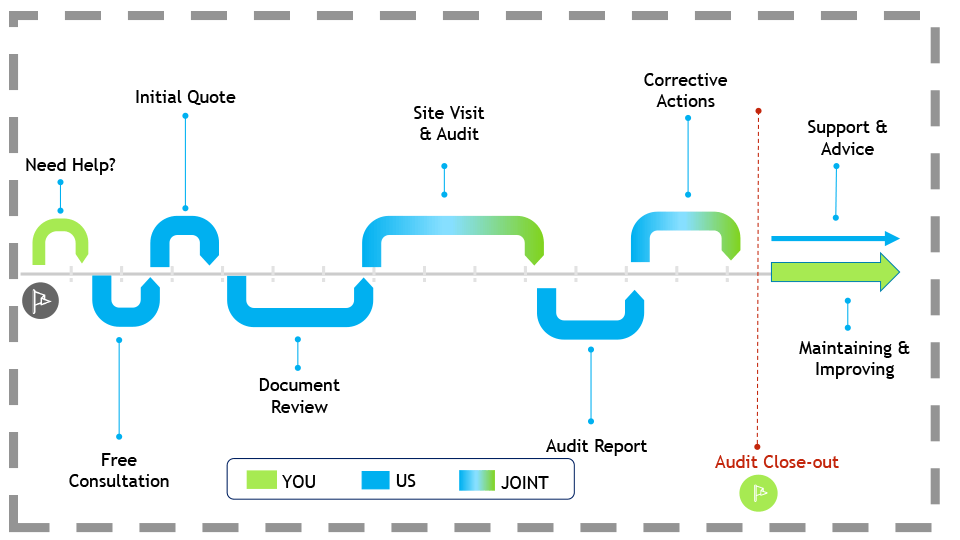 Audit Services Timeline